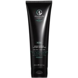 Paul Mitchell Awapuhi Wild Ginger Moisturizing Lather Shampoo 250ml