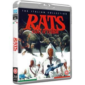 Rats: Nights of Terror
