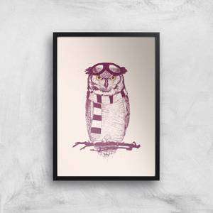 Balazs Solti Winter Owl Art Print
