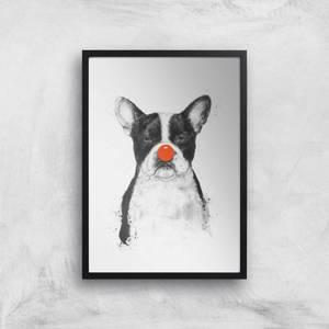 Balazs Solti Red Nosed Bulldog Art Print