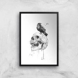 Balazs Solti Skull and Crow Art Print