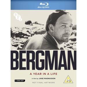 Ingmar Bergman: A Year in A Life