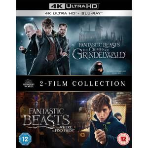 Colección de dos películas de Animales fantásticos - 4K Ultra HD