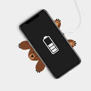 Bruce Bear Wireless Phone Charger