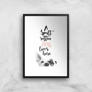 A Spoilt Rotten Dog Lives Here Jack Russell Art Print