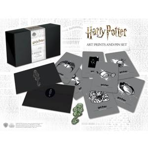 Harry Potter Dark Arts - Pin's et Cartes de collection