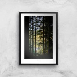 Macclesfield Forest Giclée Art Print