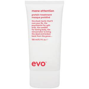 evo Mane Attention Protein Treatment