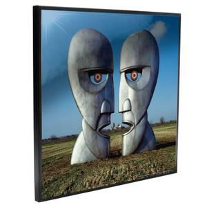 Pink Floyd - Division Bell Crystal Clear Pictures Wall Art