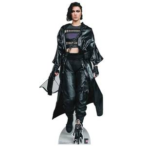 Birds of Prey Huntress Lifesized Cardboard Cut Out