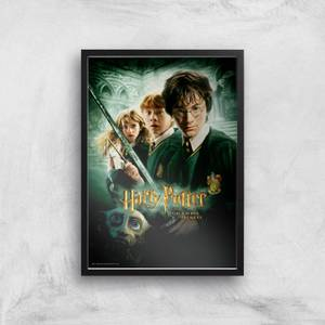 Harry Potter and the Chamber Of Secrets Giclee Art Print