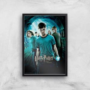 Harry Potter and the Order Of The Phoenix Giclee Art Print