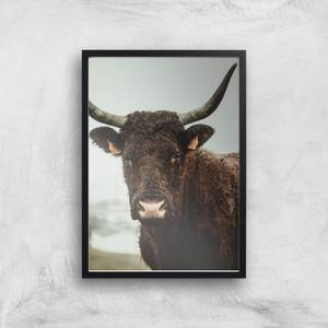 How Now Brown Cow Giclee Art Print