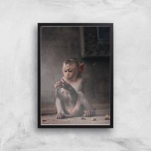 Baby Monkey Giclee Art Print