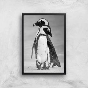 A Couple Of Penguins Giclee Art Print