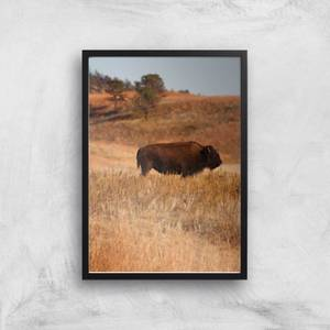 Bison Giclee Art Print