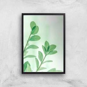 Washed Out Leaves Giclee Art Print
