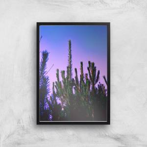 Pine Forest At Dawn Giclee Art Print