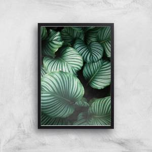 Leaves From Above Giclee Art Print