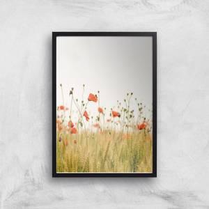 Poppy Fields Giclee Art Print