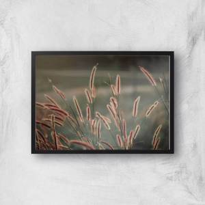 Blowing In The Wind Giclee Art Print