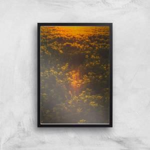 Sunset Field Giclee Art Print