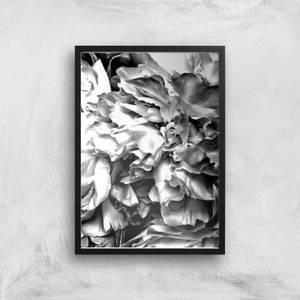 Petals In Mono Giclee Art Print