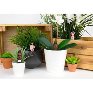 Naked Ramblers - Mini Plant Pot Planters