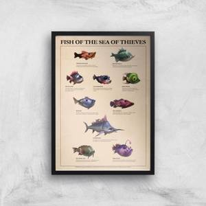 Fish Of The Sea Of Thieves Giclee Art Print