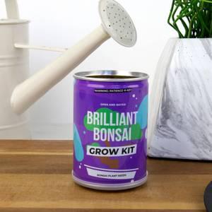 Grow Tin - Brilliant Bonsai