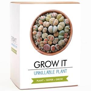 Grow It - Unkillable Plant