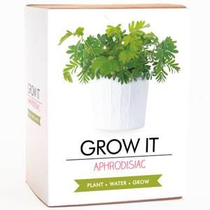 Grow It - Aphrodisiac Plant