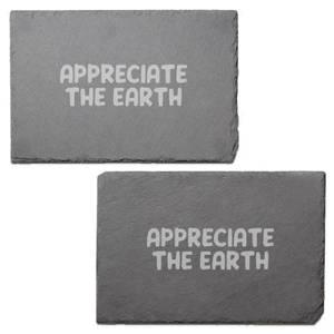 Appreciate The Earth Engraved Slate Placemat - Set of 2