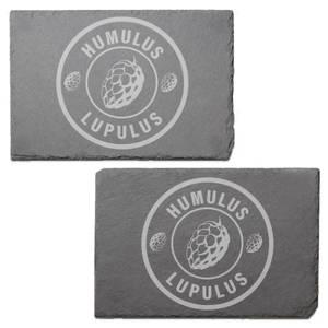 Humulus Lupulus Engraved Slate Placemat - Set of 2