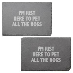 I'm Just Here To Pet All The Dogs Engraved Slate Placemat - Set of 2
