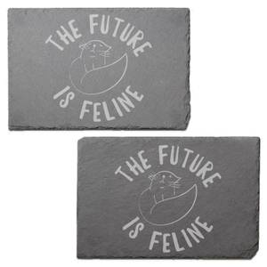The Future Is Feline Engraved Slate Placemat - Set of 2