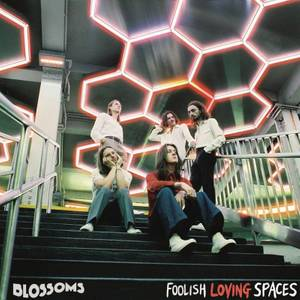 Blossoms - Foolish Loving Spaces LP