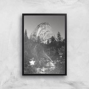 Yosemite Tree Giclee Art Print