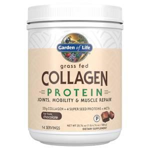 Proteine di collagene - Cioccolato - 588 g