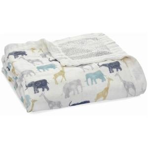 aden + anais Silk Soft Dream Blanket - Expedition