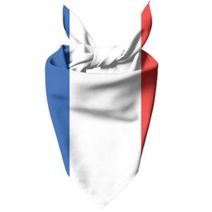 French Flag Dog Bandana