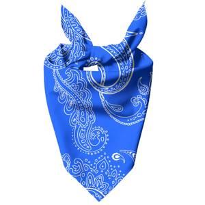 Bright Blue Paisley Dog Bandana