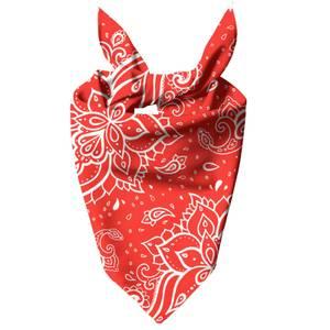 Red Paisley Dog Bandana