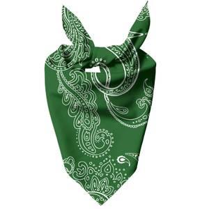 Dark Green Paisley Pet Bandana