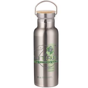 Harry Potter Slytherin Portable Insulated Water Bottle - Steel