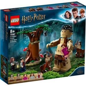 LEGO Harry Potter: Forbidden Forest: Umbridge's Encounter (75967)