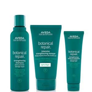 Aveda Botanical Repair Routine