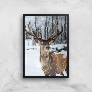Reindeer Giclee Art Print