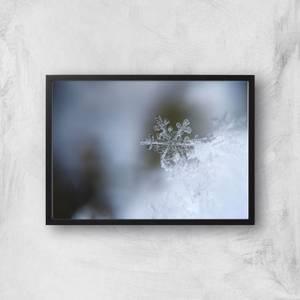Frosty Snowflake Giclee Art Print