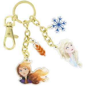 Frozen Key Charms